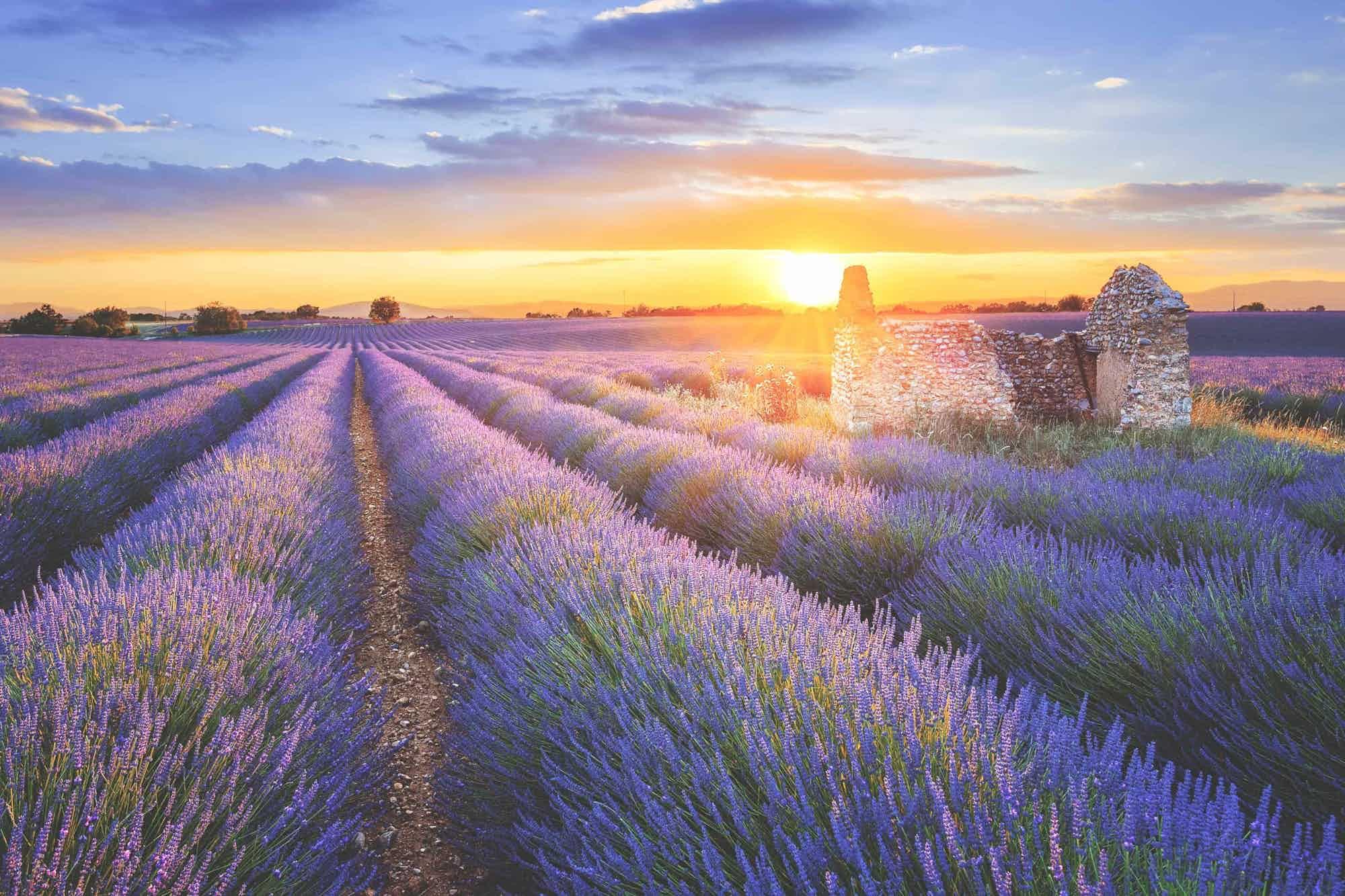 Location camping-car Provence