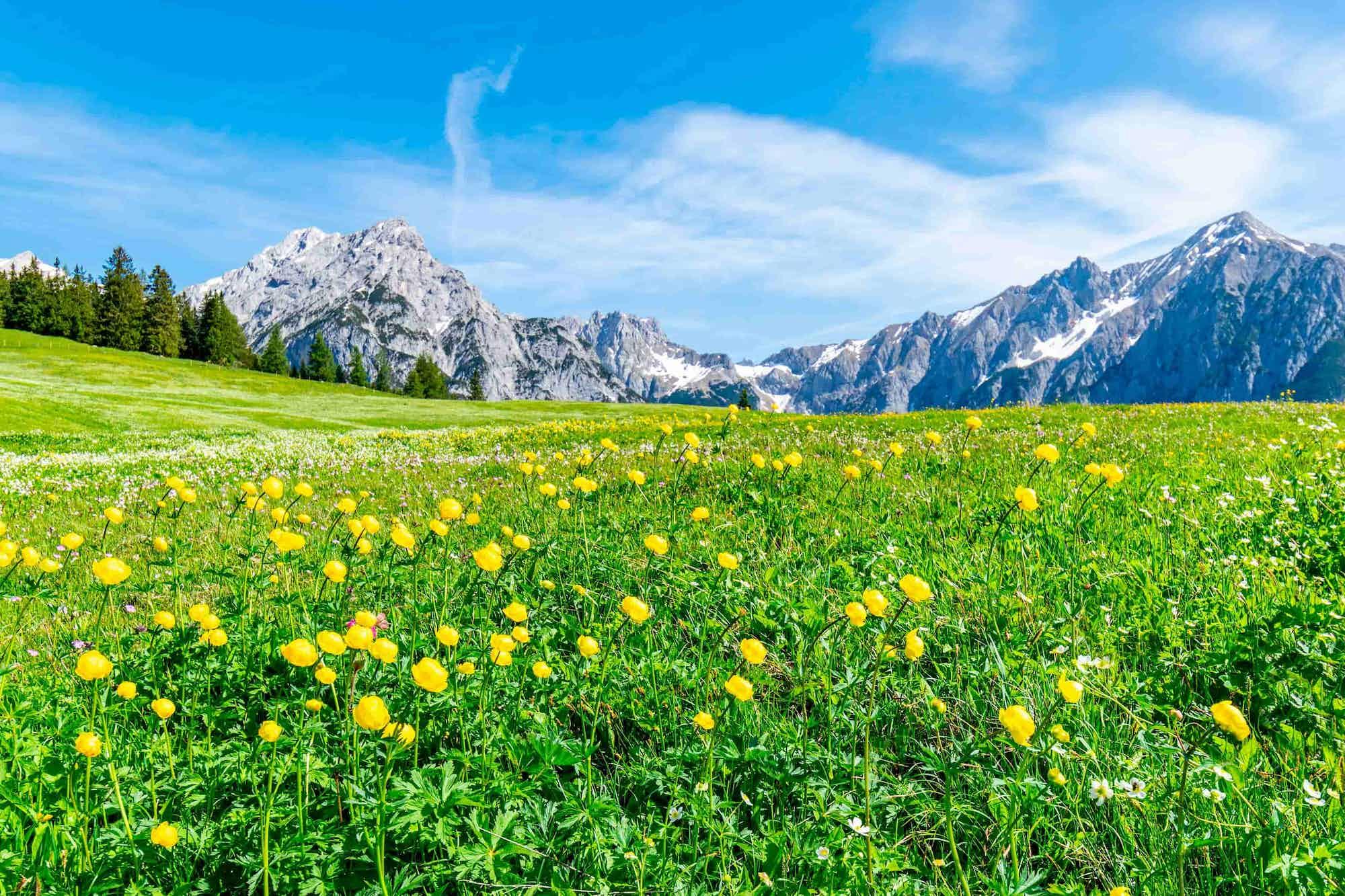Location camping car Autriche
