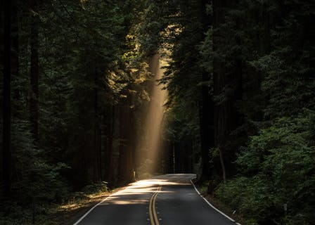 An illuminated road