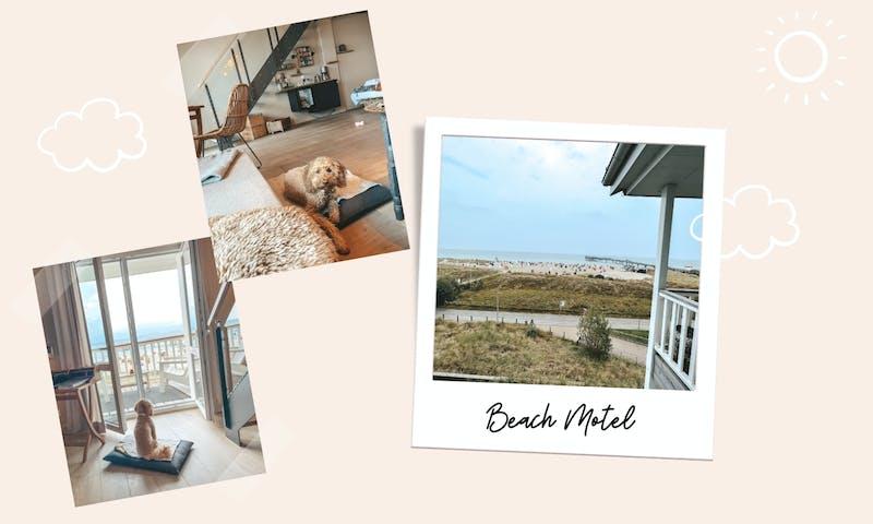 Beach Motel Heiligenhafen mit Hund im Test