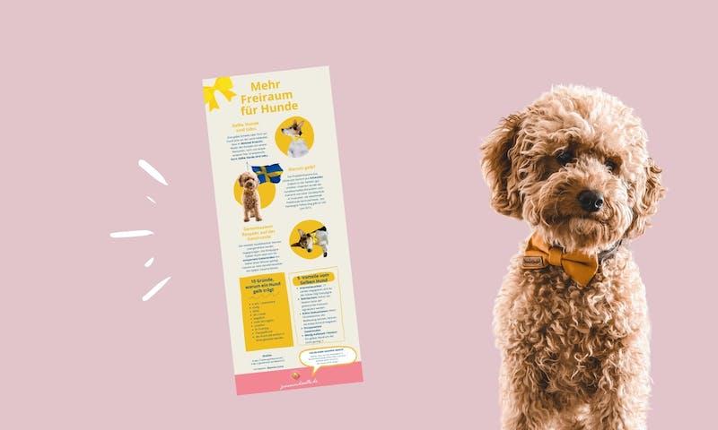 Mehr Freiraum für Hunde: Gelber Hund Infografik