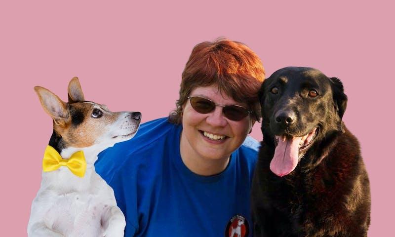 Gelbe Hunde brauchen Abstand: Interview mit Ramona Noack