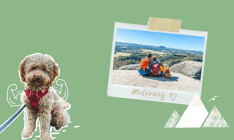 Malerweg mit Hund: Vorbereitungen, Impressionen und die 8 Etappen durch die Sächsische Schweiz