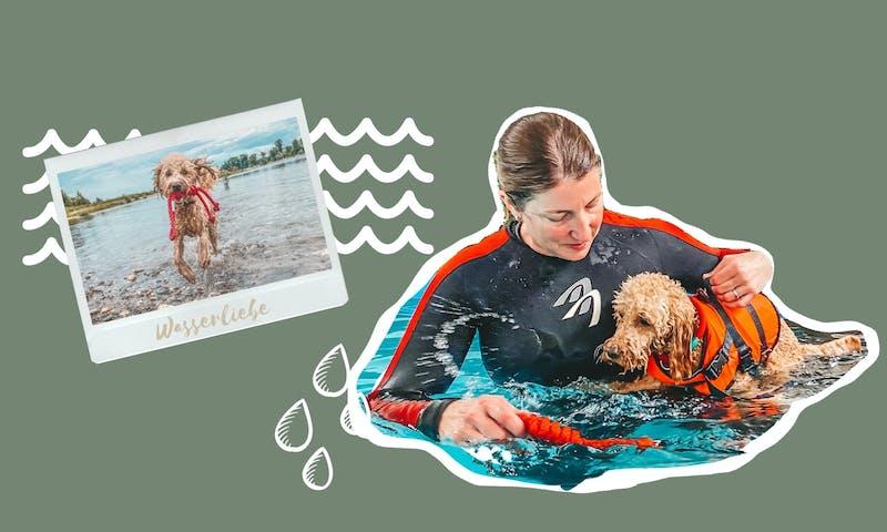 Hundeschwimmen mit Susanne Siebertz