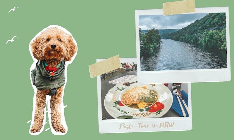 Wandern mit Hund in NRW: Pasta-Tour um den Hengsteysee