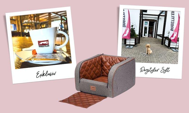 Zu Besuch bei der Luxushundemarke Dogstyler auf Sylt