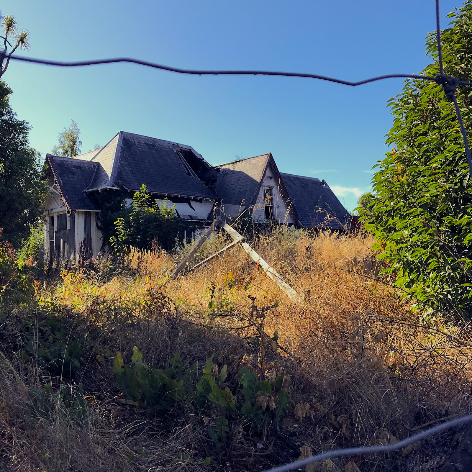 An abandoned house with lots of tall brown grass