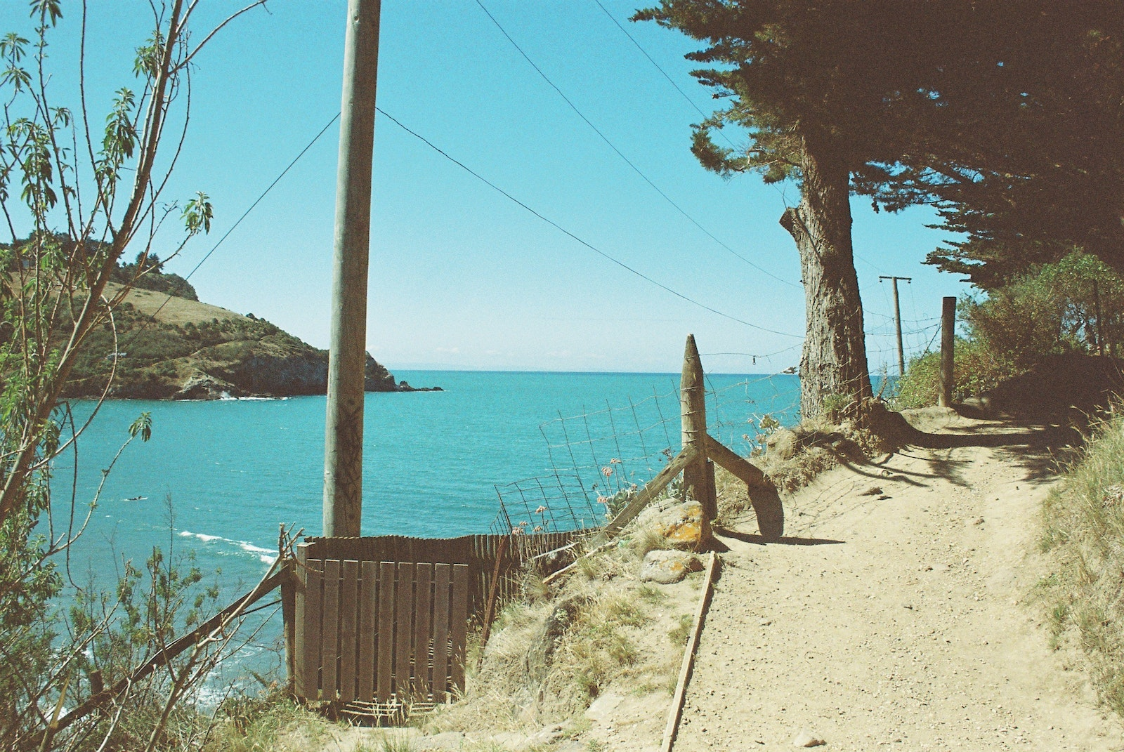 A path leading away to the right with ocean on the left