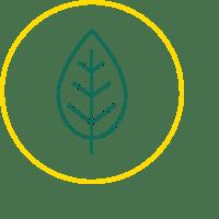 Environmental - socially responsible investments standard