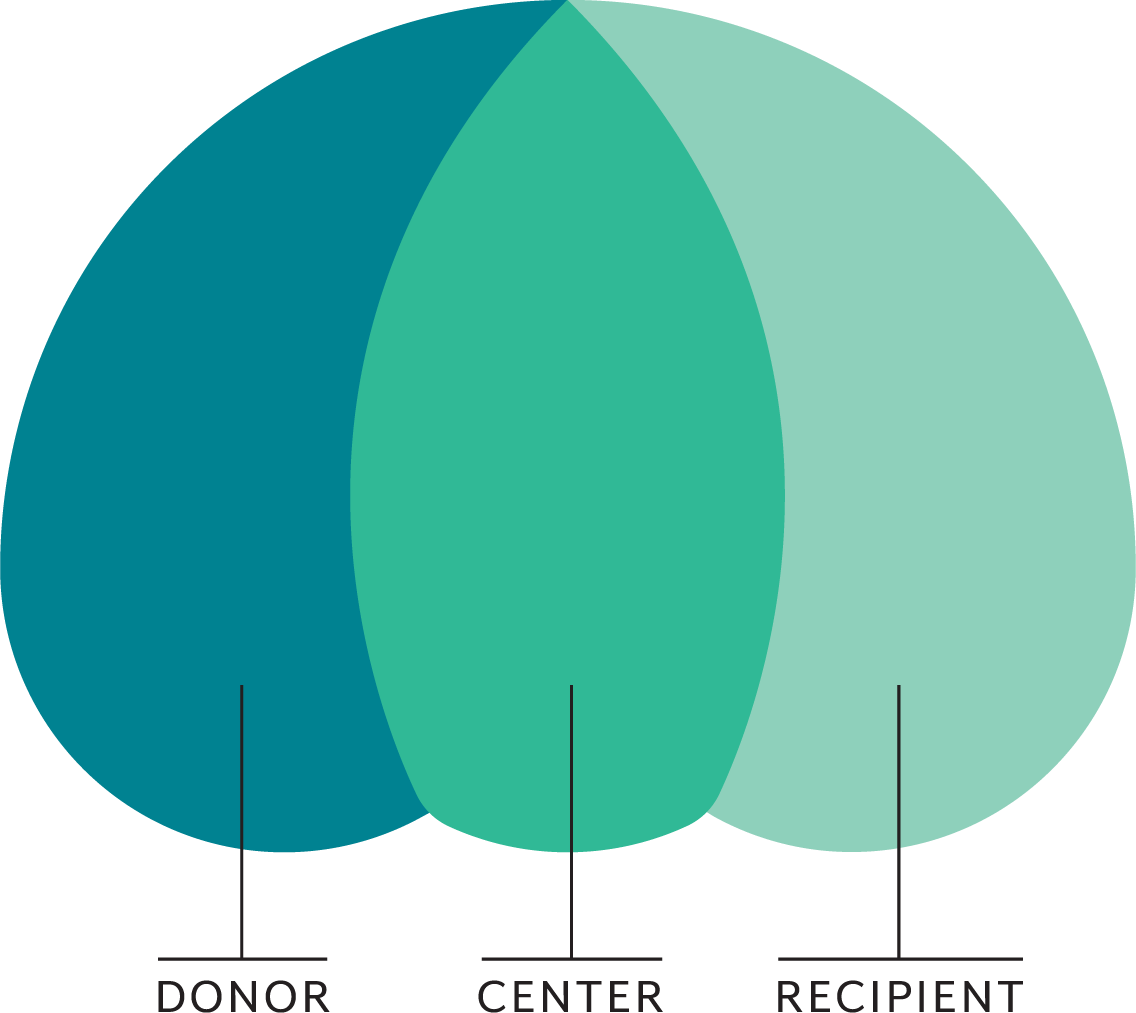 """Illustration explaining Parachute logo. Logo is in 3 parts, labeled """"Donor,"""" """"Center,"""" and """"Recipient,"""" from left to right"""