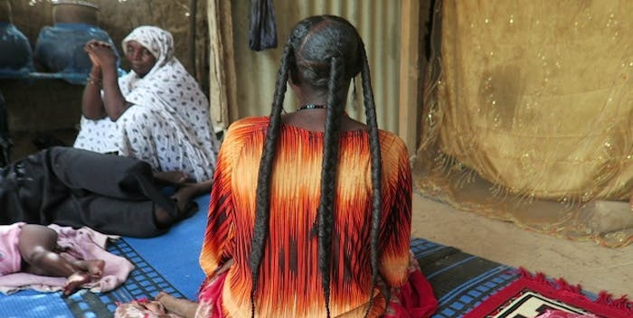 african chad chebe powder and chebe shebe pland for African black hair