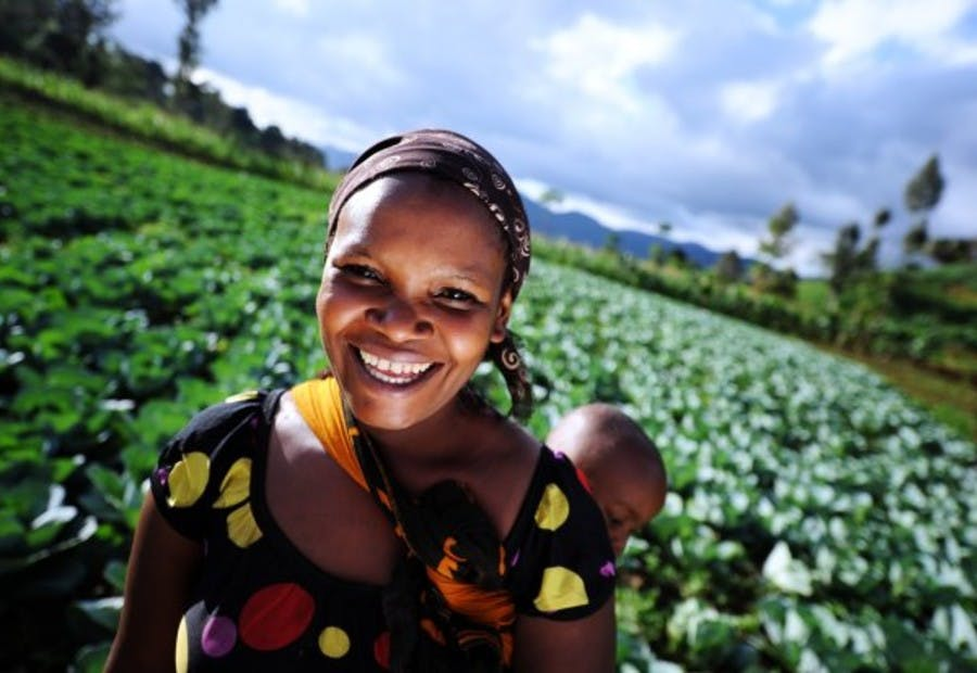 agriculture and african women hard work