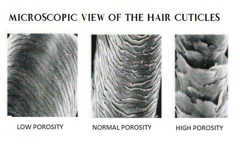 hair with high porosity