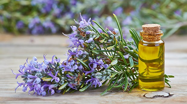 rosemary oil for afro hair