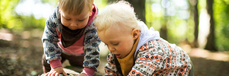 Kinder untersuchen einen Stein im Wald