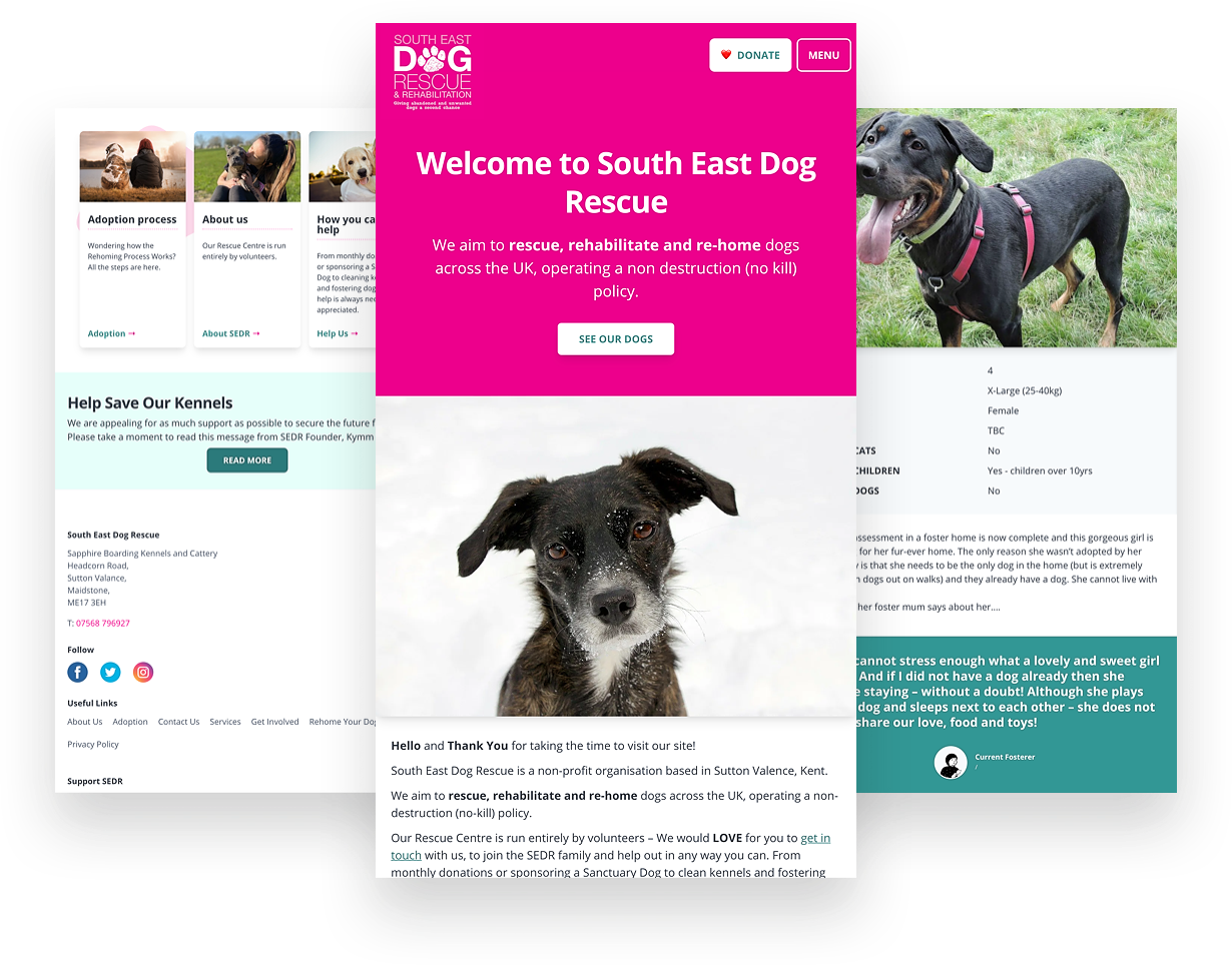 3 different views of SEDR website on mobile screens