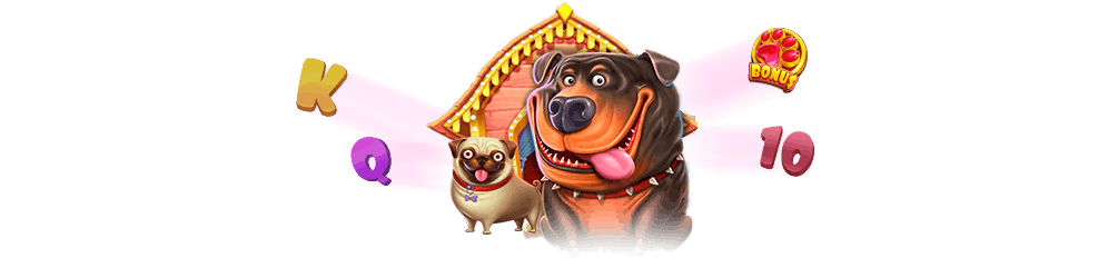 symbole premium the dog house megaways