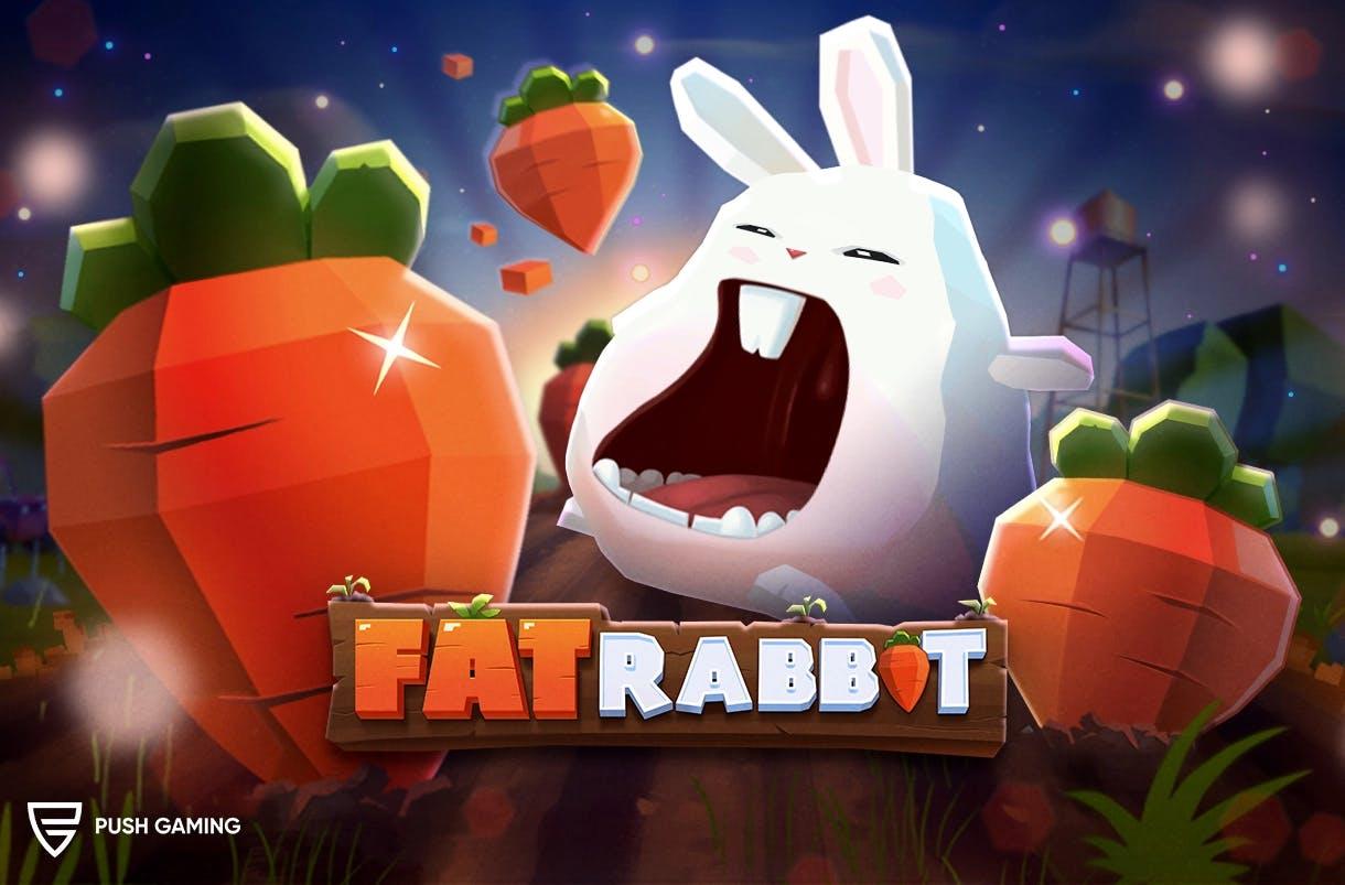 fat rabbit image d illustration officielle de push gaming