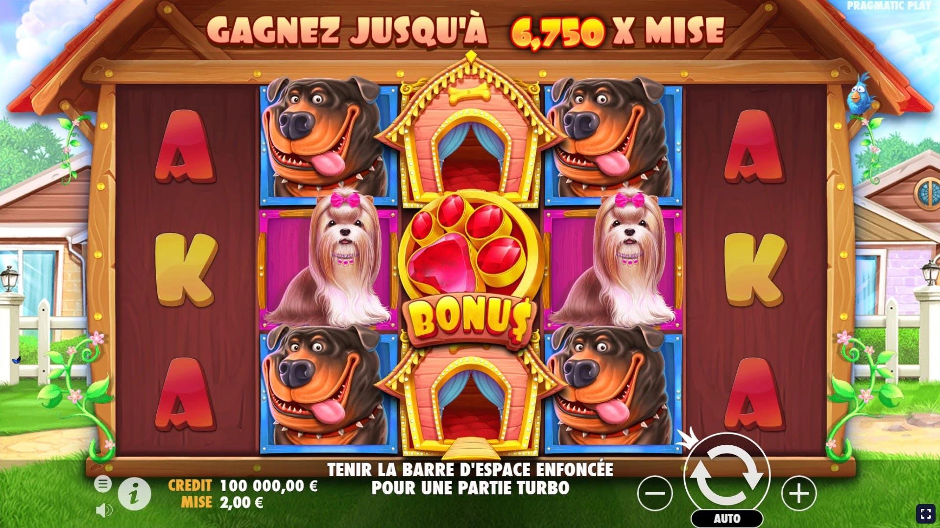 gameplay illustre de the dog house de pragmatic play