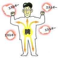 消化器の働きが弱いとからだにどんな影響が?