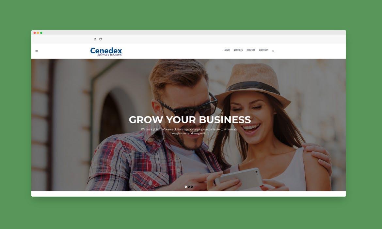 Cenedex Solutions