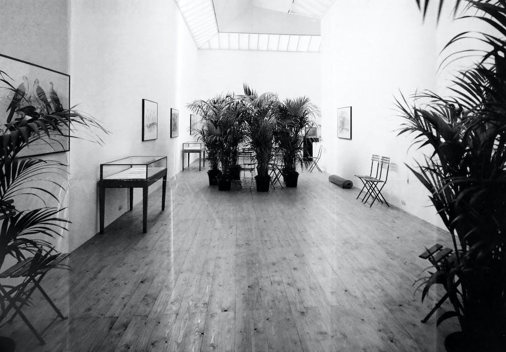 Marcel BroodthaersUn Jardin d'hiver - l'ensemble des oeuvres graphiques et des livres