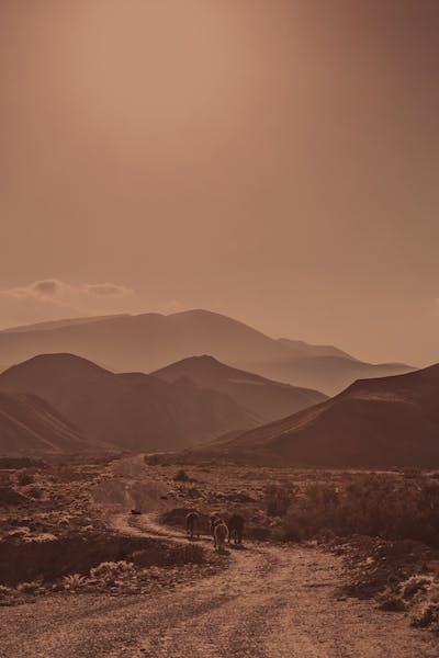 Dirt road winding through mountains
