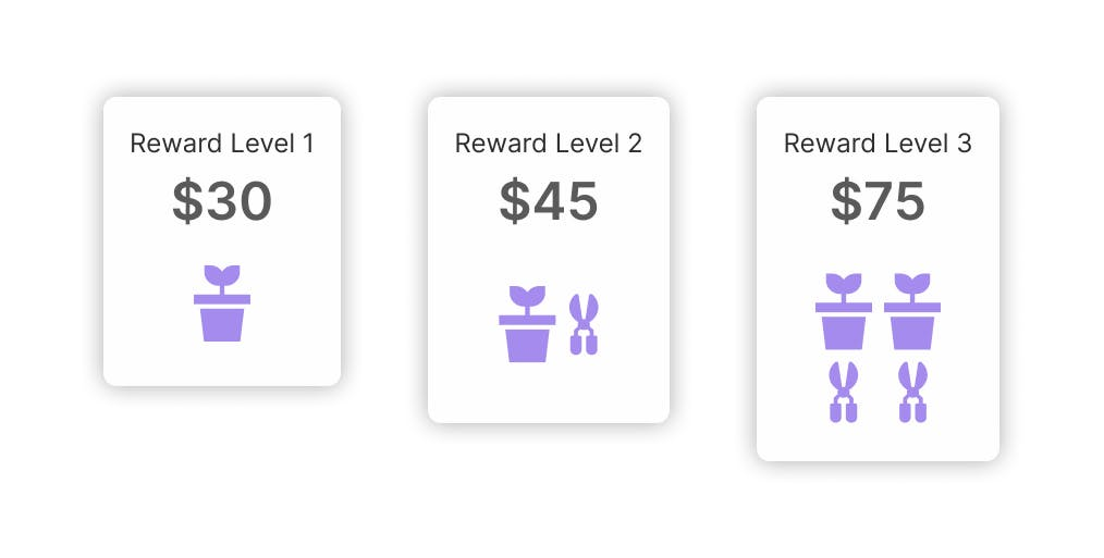 Example of crowdfunding reward levels