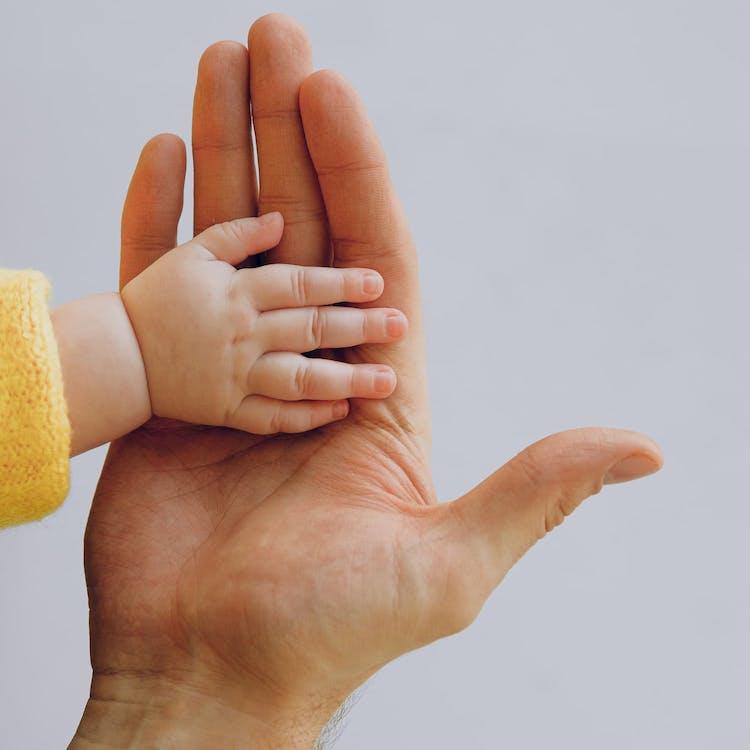 Bebishand och förälder