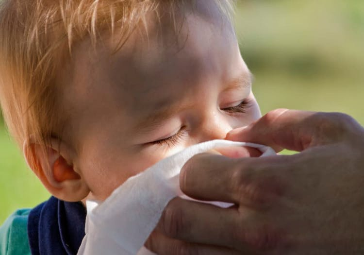 Bebis som snyter sig