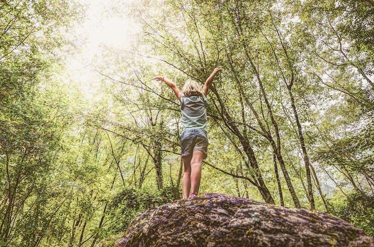 Barn i skog står på en klippa. Gröna träd
