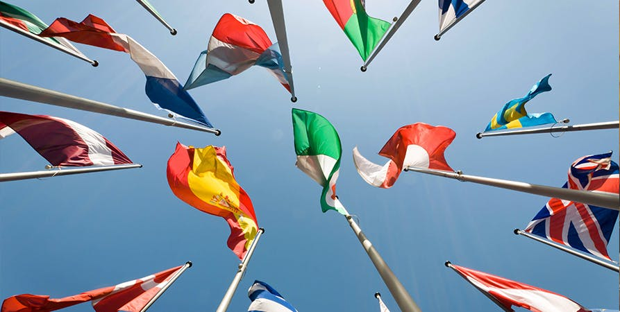 Decorative: flags from various nations to illustrate international relations and how the world works