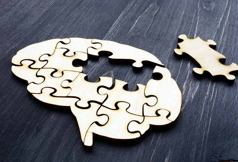 Decorative: A puzzle of the human brain