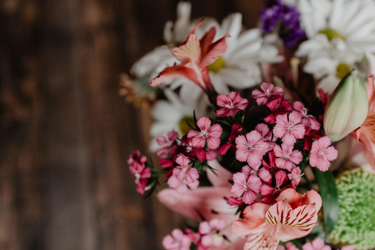 Comment entretenir son bouquet de fleurs fraiches?