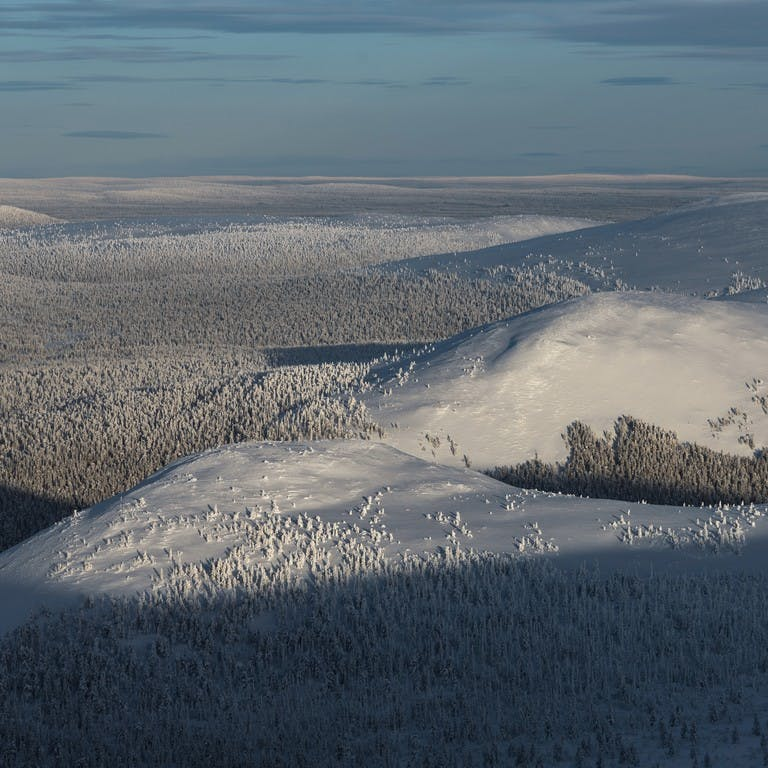 Mittwinter in Lappland