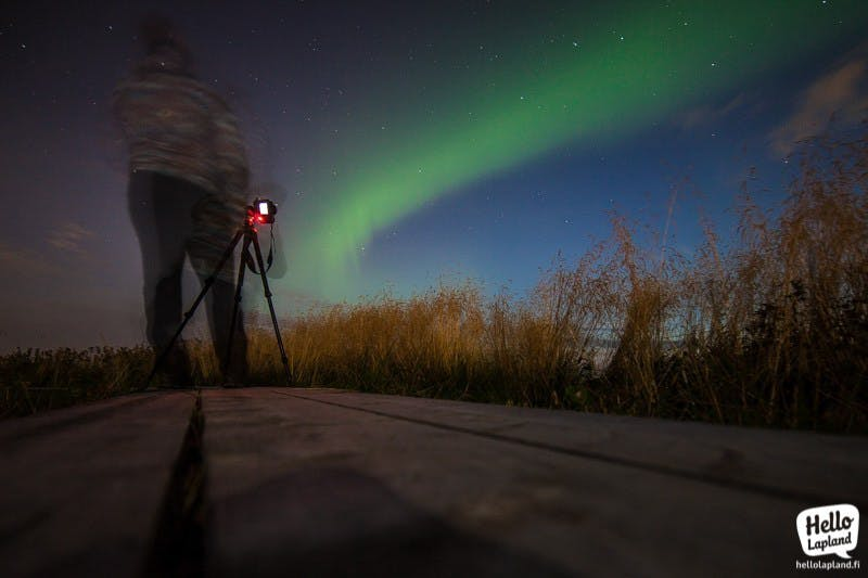 Northern lights in Rovaniemi (Picture by Aleksander Kuznestov)