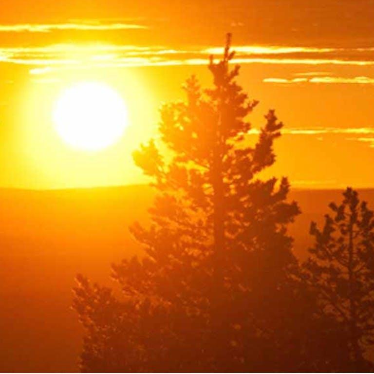 Excursiones y tours de sol de medianoche en Laponia
