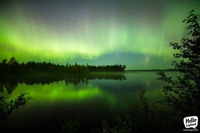 Nothern lights in Autumn time in Rovaniemi (Picture by Aleksander kuznetsov)