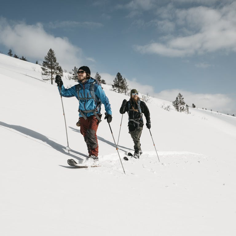 Cross-country skiing, traverse and Altai short skiing in Lapland
