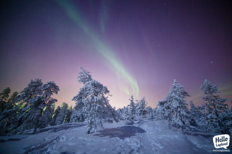 Aurora borealis in winter in Lapland (picture by Aleksander Kuznetsov)
