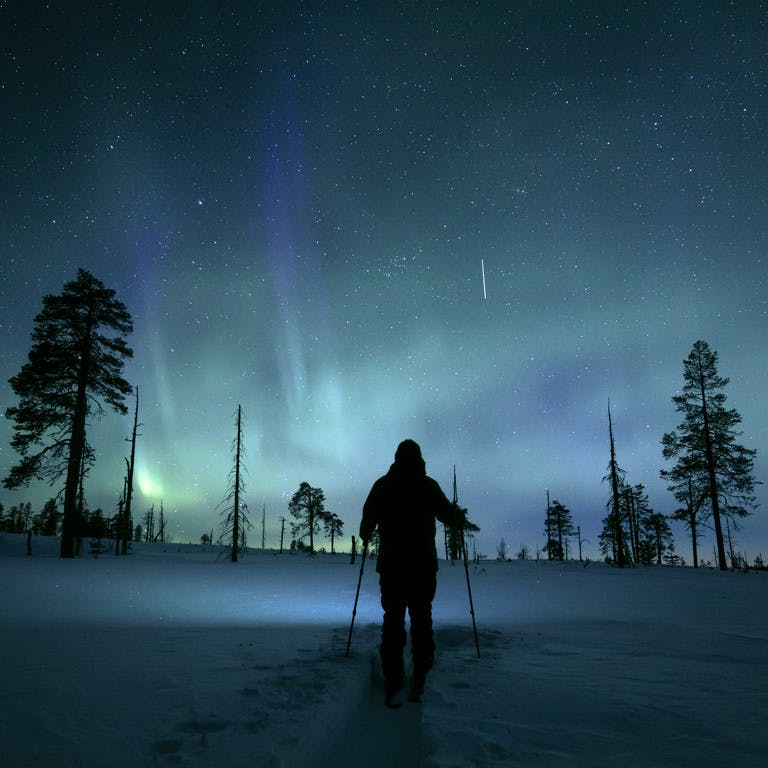 Northern lights experiences, activities and excursions in Lapland