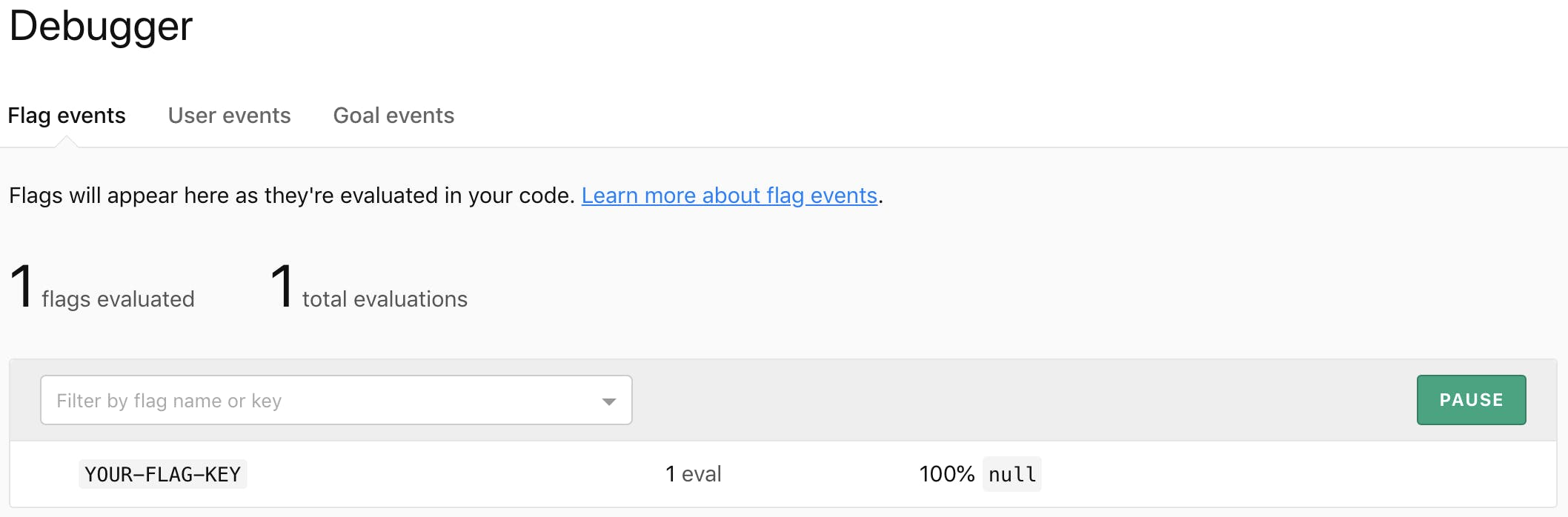 Debugger results showing the flag was evaluated