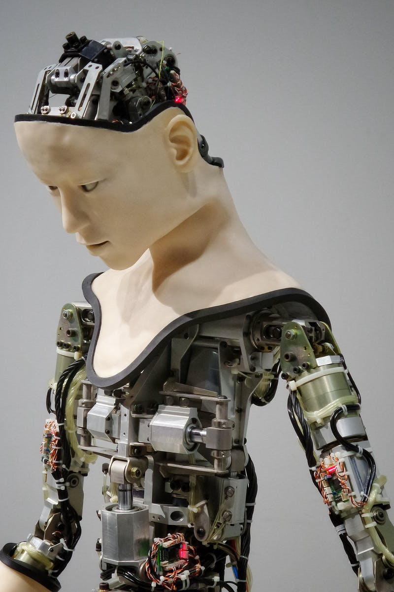 Robot with exposed inner workings