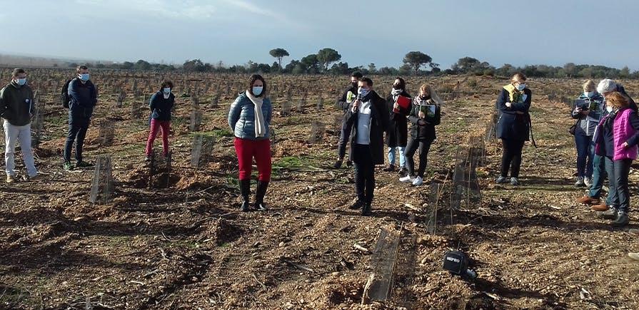 Près de 21 hectares seront replantés à Générac dont 8 grâce à la contribution du Groupe La Poste. Dans le cadre de ce projet, une attention particulière a été portée à la biodiversité avec le choix d'essences autochtones