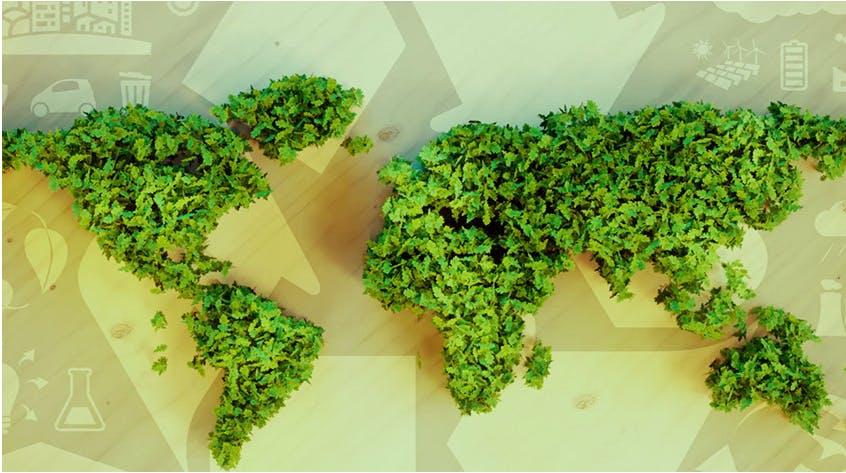 La Poste s'engage pour la neutralité carbone