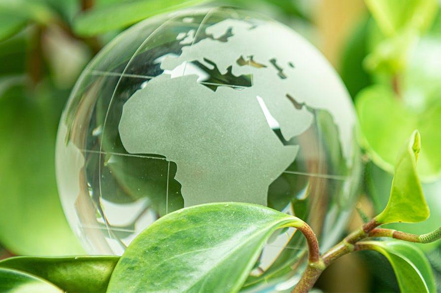 La Poste a signé une convention de partenariat avec la Fondation GoodPlanet, créée en 2005 par Yann Arthus-Bertrand.