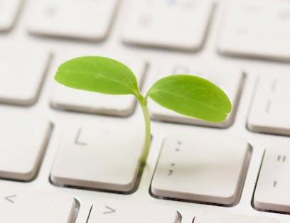 Le digital a un impact croissant sur la planète et il constitue également un outil essentiel de la transition écologique.