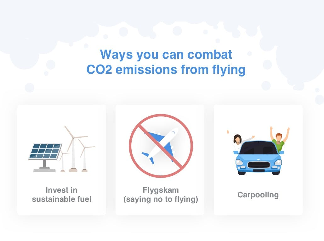 How to combat domestic flight CO2 emissions