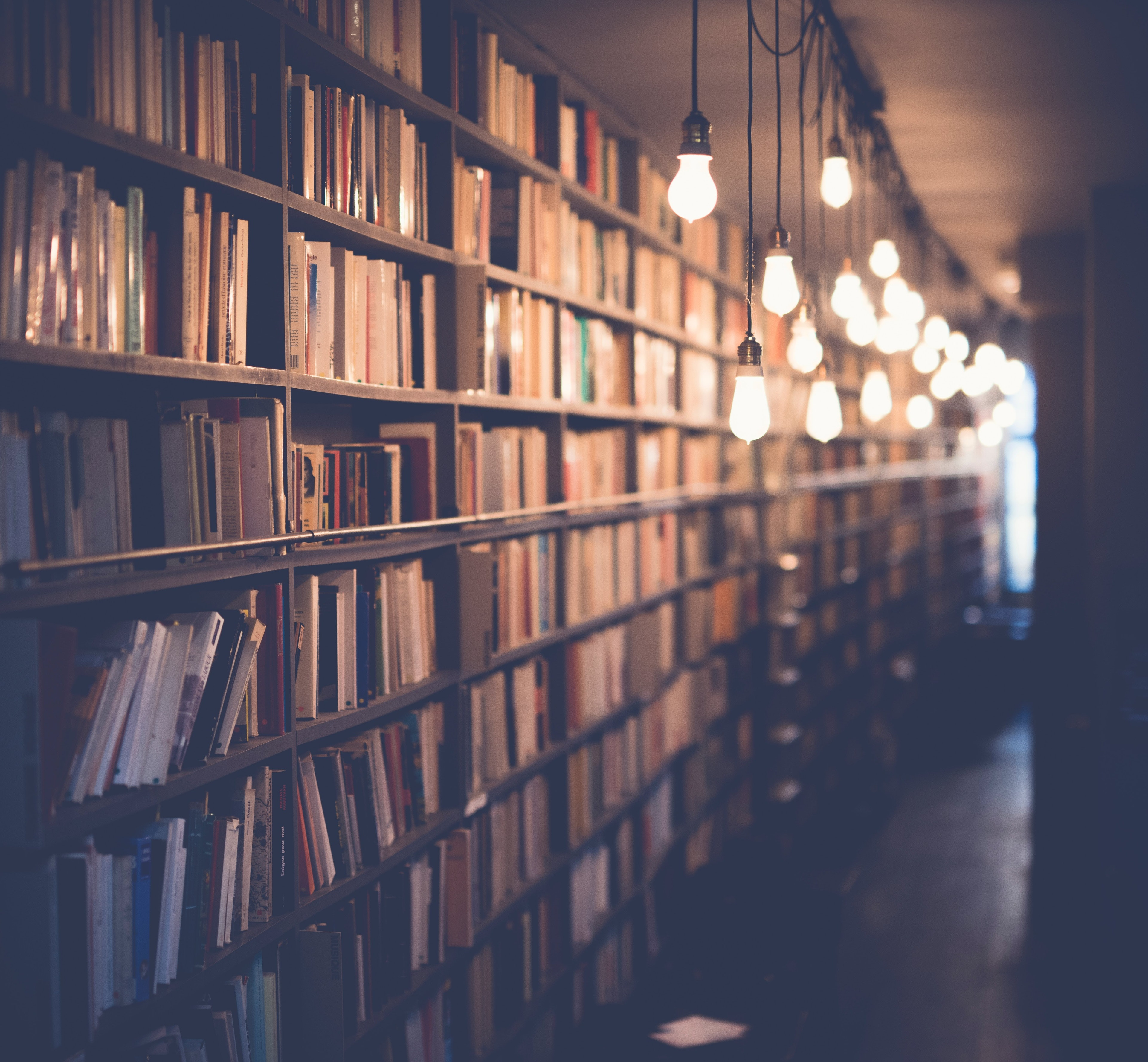 A row of bookshelves full of books, softly lit by a row of hanging lightbulbs