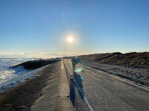 海沿いをお散歩🐶